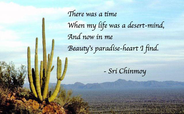 my-life-desert-mind-unmesh