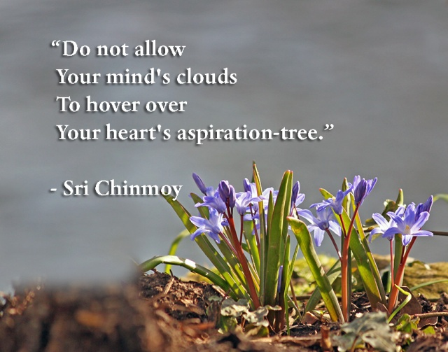 meditacao-guiada-do-not-allow-your-minds-clouds