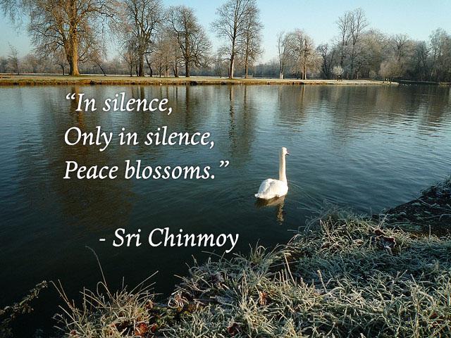 meditacao-guiada-in-silence-only-silence