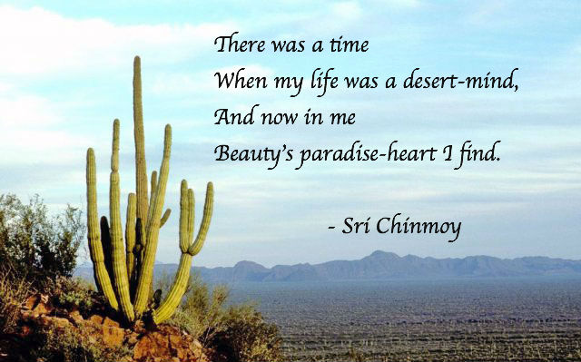 meditacao-guiada-my-life-desert-mind-unmesh