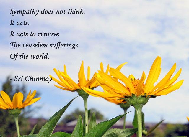 poema-de-sri-chinmoy-sympathy-does-not-thinkflower-blue-sky