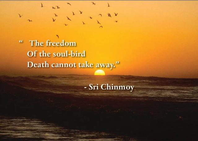 poema-de-sri-chinmoy-the-freedom-of-soul-bird-death
