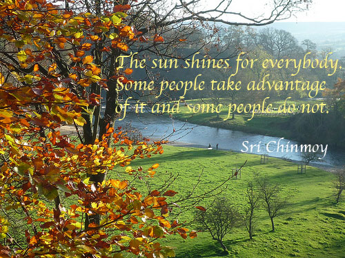 poema-de-sri-chinmoy-the-sun-shines-for-everyone