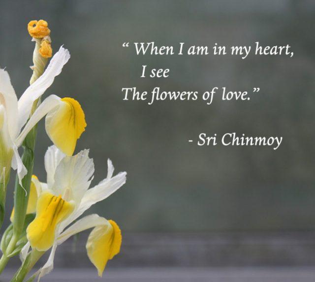 cropped-poema-de-sri-chinmoy-when-i-am-in-my-heart.jpg