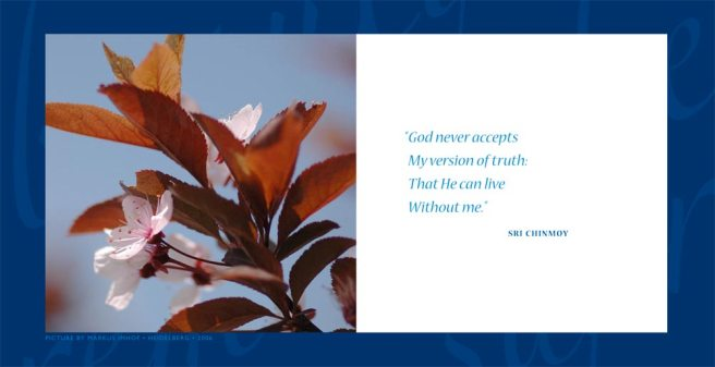 daily-aphorism-by-sri-chinmoy-0041