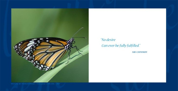 daily-aphorism-by-sri-chinmoy-0042