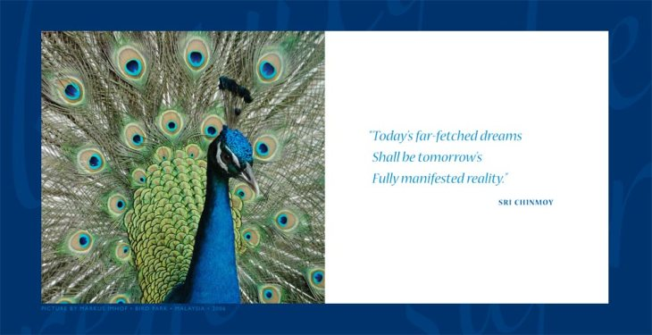 daily-aphorism-by-sri-chinmoy-0052
