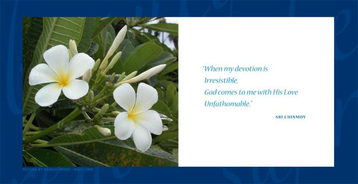 daily-aphorism-by-sri-chinmoy-0076